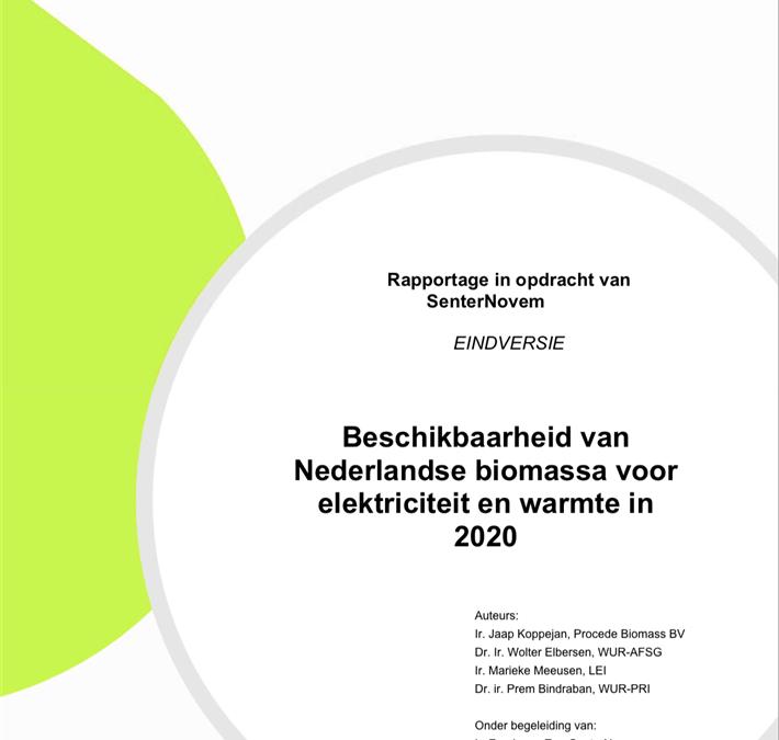 Biomassa – Beschikbaarheid en Handel